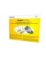 Magnet yellow liimpüünis